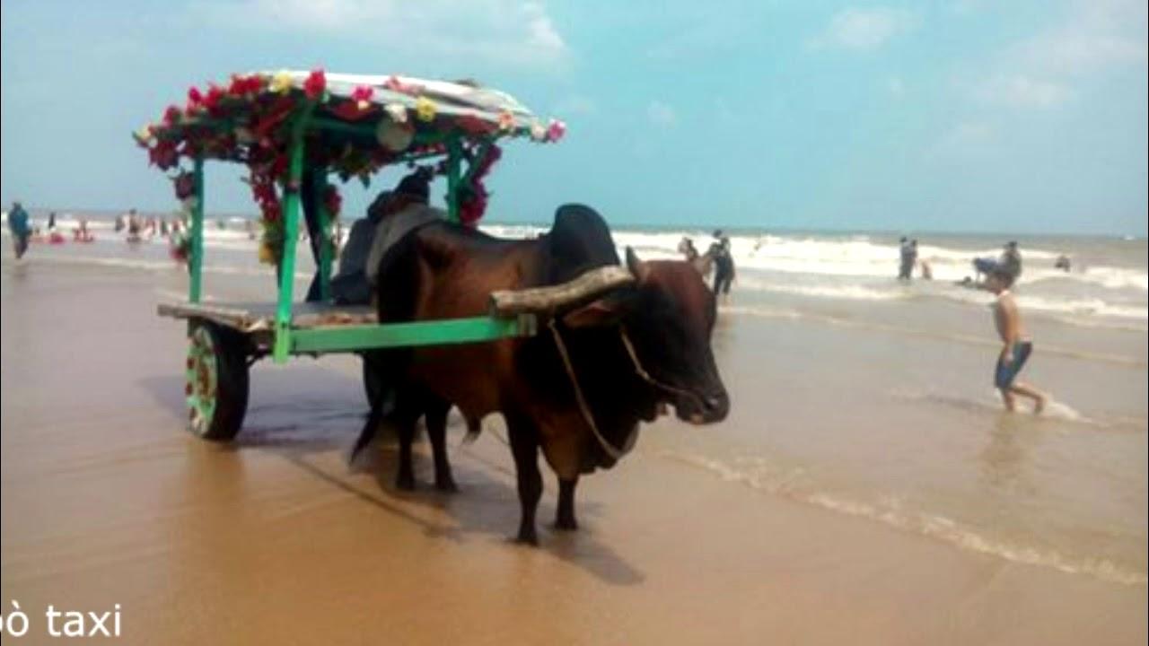 Kỉ niệm đi biển Lagi Bình Thuận