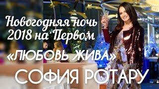 СОФИЯ РОТАРУ «ЛЮБОВЬ ЖИВА» НОВОГОДНЯЯ НОЧЬ 2018 НА ПЕРВОМ