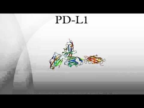PD-L1