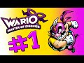Wario: Master of Disguise: Episode 1: The Purple Wind!