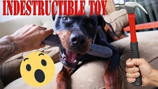 INDESTRUCTIBLE DOG TOY - Indestructibone - BULLETPROOF PET PRODUCTS