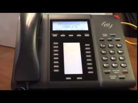 Programming ESI Remote Phone Example