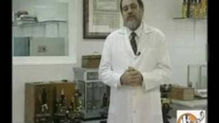 Leyes Alimentarias Judias-Kosher-Rabi Moshe Bendahan