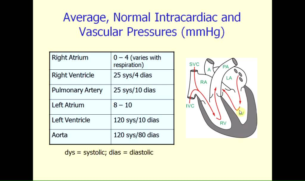 Normal Intracardiac Pressure - YouTube