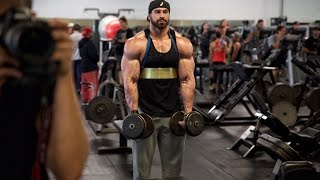 Bradley martyn | EVERYDAY IS ARM DAY | FULL ROUTINE