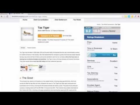 tax-tiger-review