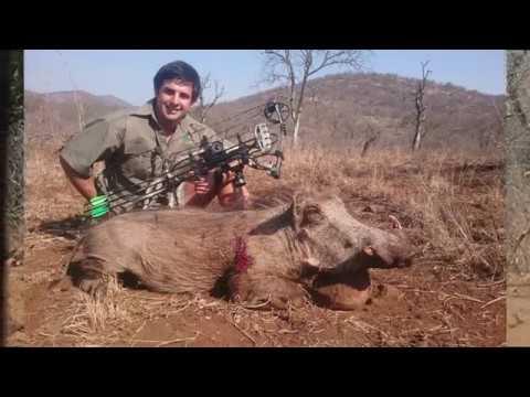 Bowhunting Warthog – South Africa