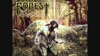 Dark Forest - The Awakening