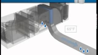Price Training Modules: Displacment Ventilation