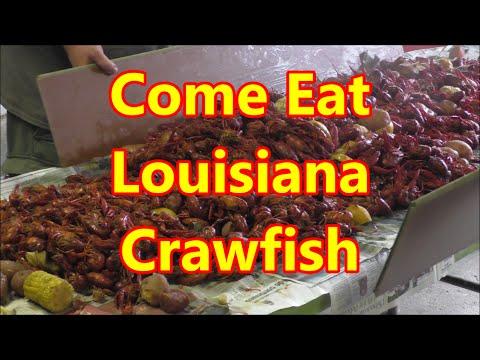 2016 Cajun Crawfish Boil Spring Fling Party Invitation