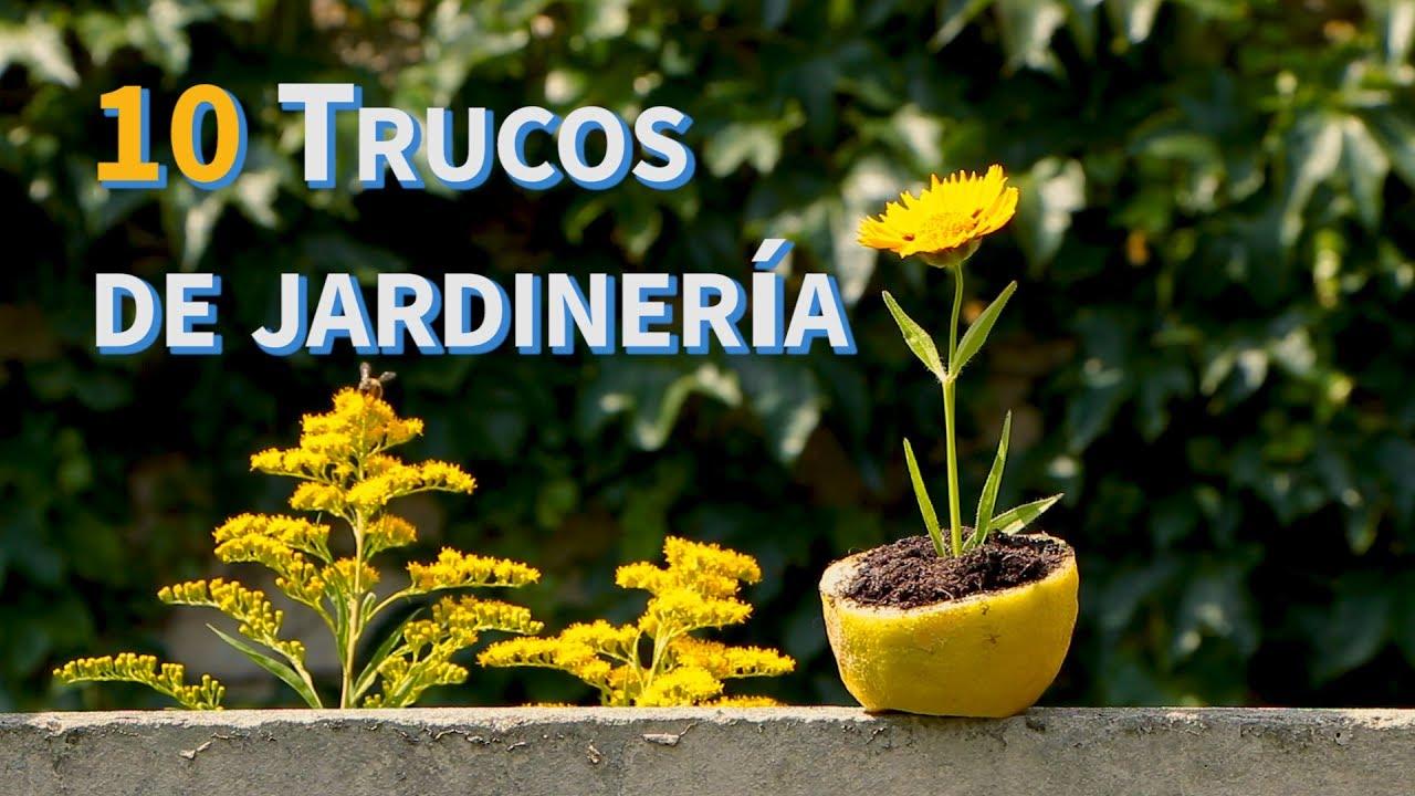 10 trucos de jardiner a manomano es youtube for Trucos jardineria