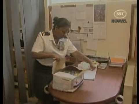 SBC Seychelles: Postal Services New Rates   25.01.09