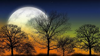Beautiful Relaxing Music - Night Nature Sounds, Beautiful Piano, Meditation Music, Stress Relief