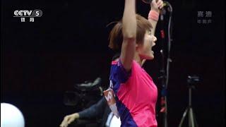 2015 wttc ws final ding ning liu shiwen hd50fps full match chinese