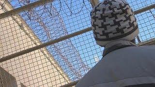 Учеба в тюрьмах снижает риск рецидивов - learning world