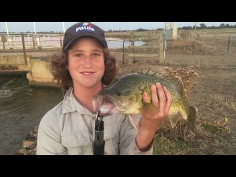 Trying New Lures- Channel Murray Cod Fishing