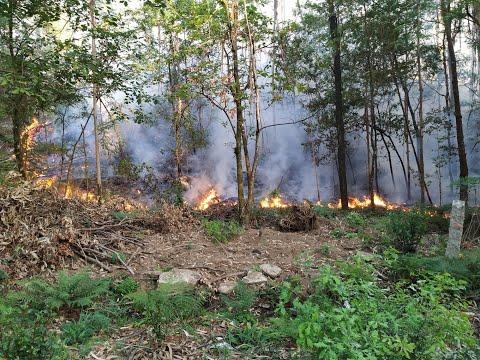 Un incendio forestal en Ponteareas