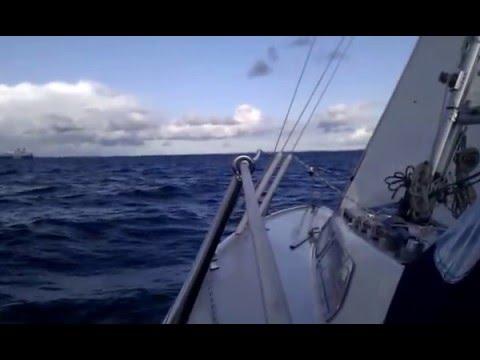 8 knots sailing