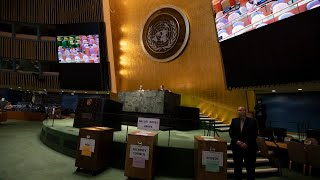 Elections results: General Assembly President, Security Council Non-permanent members, ECOSOC member