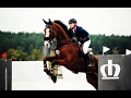 Horse Jumping Music Video || Fight Song
