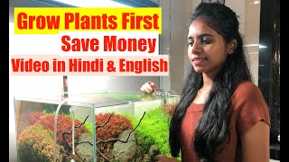 How To Grow Aquatic Plants in …