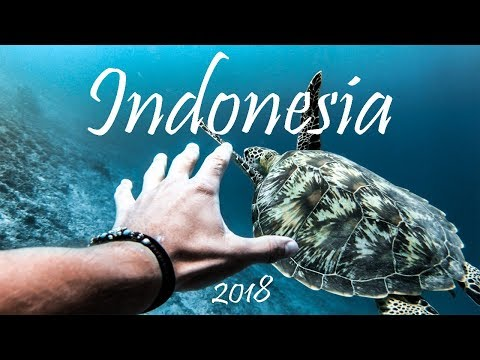 Indonesia Travel | 2018