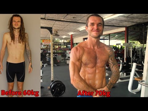 what-calisthenics-workout-program-did-i-use-to-transform-my-body-in-1-year?