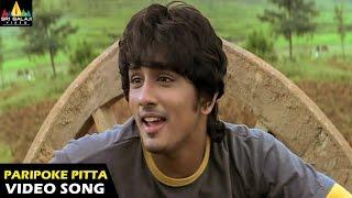 Nuvvostanante Nenoddantana Songs | Paripoke Pitta Video Song | Siddharth, Trisha | Sri Balaji Video