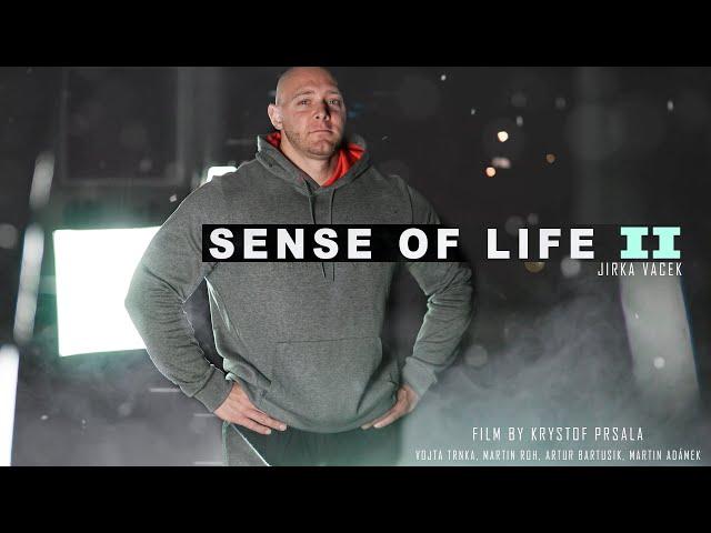 SENSE OF LIFE II - Jirka Vacek