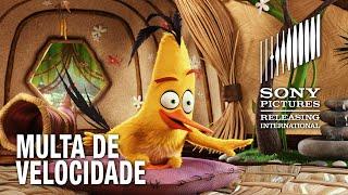 Angry Birds O Filme | Multa de velocidade
