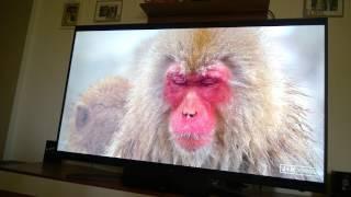 samsung tv update version 1233 Mp4 HD Video WapWon