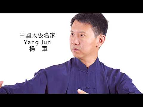 Yang Jun - The Belt and Road China Tai Chi Culture World Tour