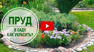 видео Водопад: растения для декорирования водной и прибрежной зоны