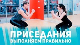 видео RU - Техника выполнения приседаний  | Приседание со штанга. Обсуждение на LiveInternet - Российский Сервис Онлайн-Дневников