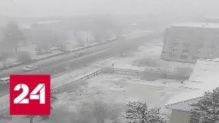 Смотреть видео Погода 24: такая контрастная осень - Россия 24 онлайн