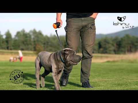 Лапахвост Lishinu Original Bangee поводок-рулетка для крупных пород собак