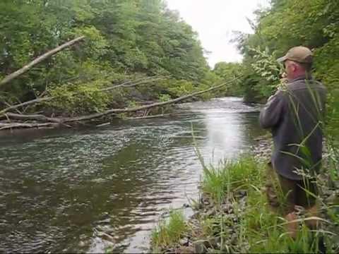 Eastern washington steelhead caught while trout fishing for Trout fishing washington