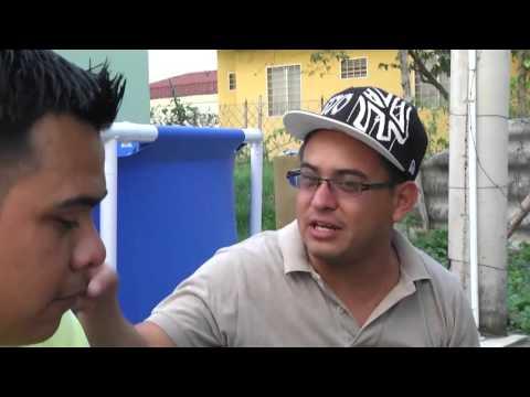 Como identificar una prepago - Los verduleros Honduras