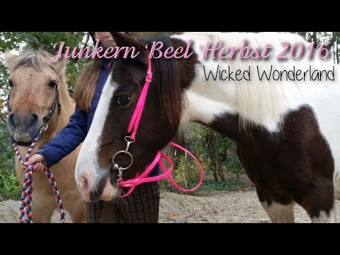 junkern-beel-2016---wicked-wonderland