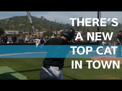 Get Ready Fans: CSUSM is Officially NCAA Division II