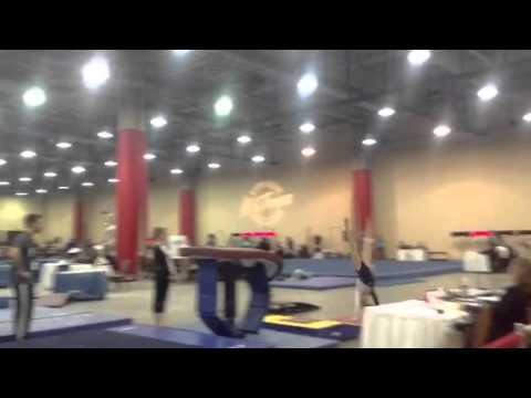 Kurt Thomas Invitational 2014 - Vault 1