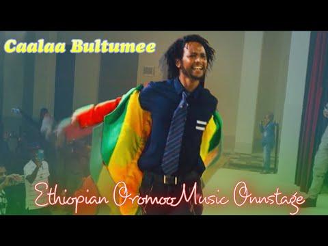 Caalaa bultumee oromo music sirna eebba filmii sibirii irratti JHB Mayfair