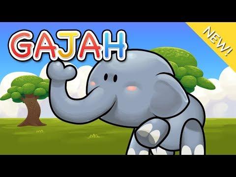 Lagu Anak Indonesia | Gajah
