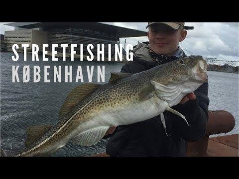 Masser Af Torsk! Streetfishing København - M. Danish Anglers