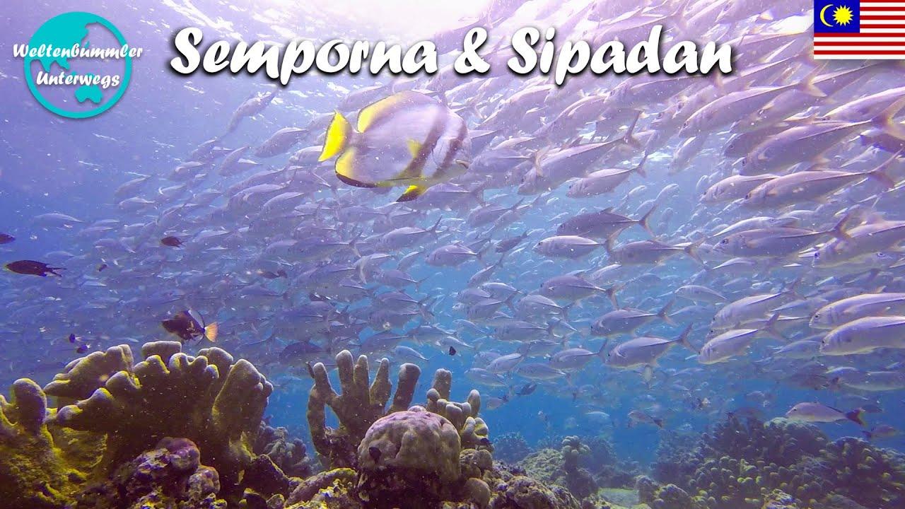 Semporna & Sipadan ∙ Eines der besten Tauchreviere der Welt ∙ Borneo ∙ Weltreise Vlog #110
