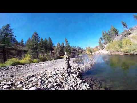 Brothers Of The Fly (Carson River)