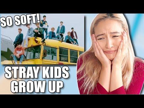 STRAY KIDS (스트레이 키즈) 'GROW UP (잘 하고 있어)' MV REACTION
