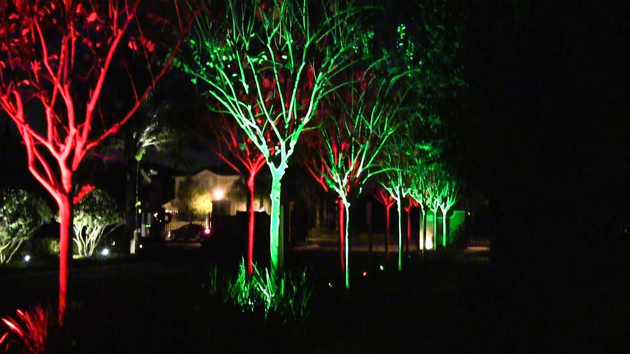 Green And Red Lights Christmas Color