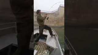 Рыбалка 2-х метровый сом