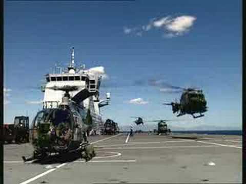 Royal Navy - Fleet air arm.